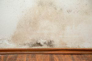 How Dry Ice Blasting Helps with Mold Maintenance