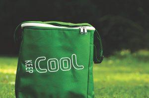 dry ice corp dry ice cooler